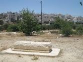 goldstein grave